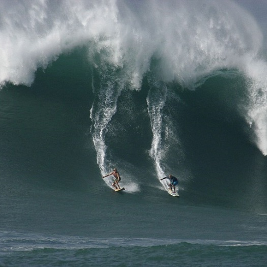 surfing 50 ft wave